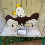 schuetzenvogel im kasten nahaufnahme