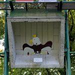 schuetzenvogel im kasten